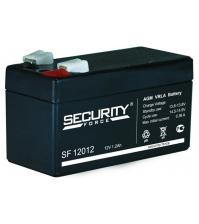Аккумуляторная батарея SECURITY FORCE SF 12012
